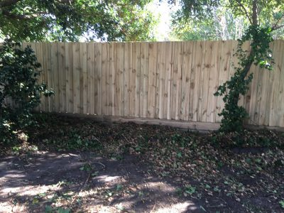 Treated pine paling fence builder for Moorabbin
